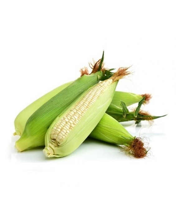 White Corn / Elote Blanco